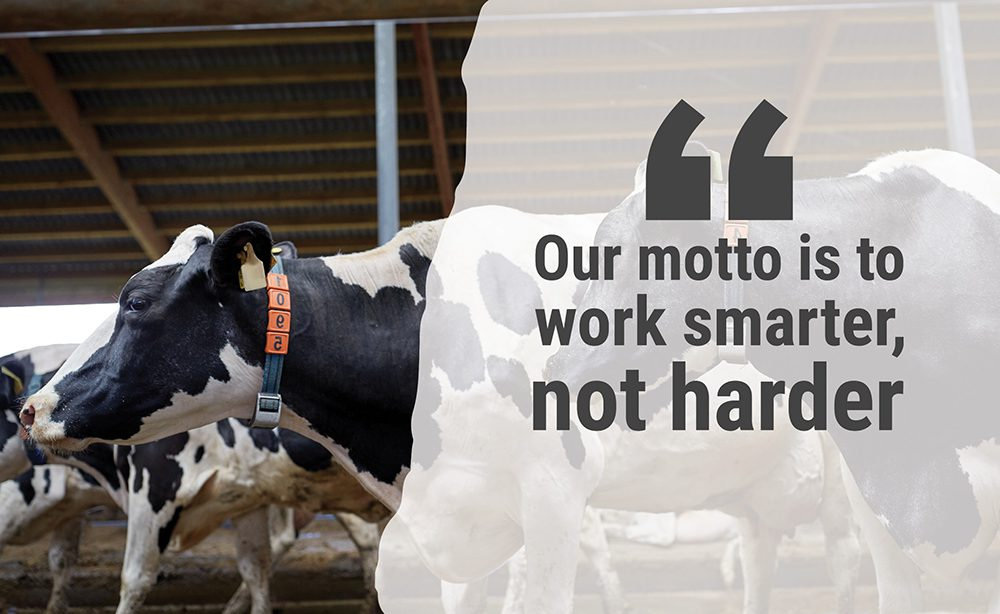 """""""Our motto is to work smarter, not harder"""""""